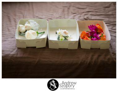 Macarthur-wedding-photographers-Camelot-Castle-Camden-weddding-receptions_0515
