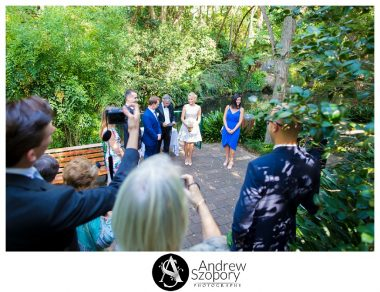 Camellia-Gardens-wedding-Kurnell-Cliff-tops-Sutherland-Shire-wedding-photographer_0004