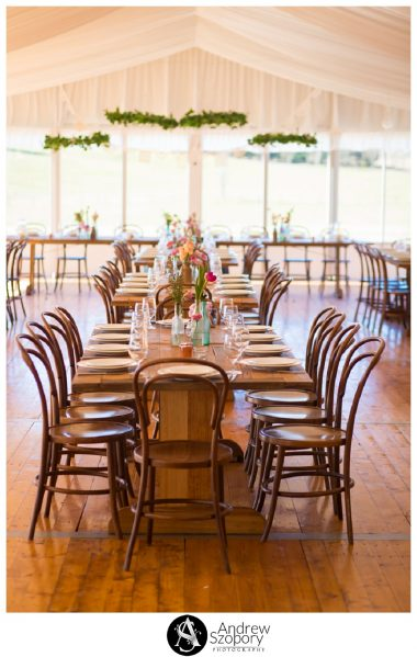 Southern-Highlands-Winery-wedding-reception-and-wedding-photographers_0315