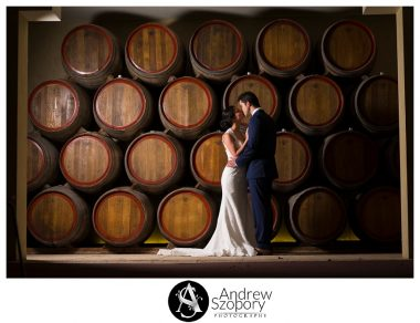 Southern-Highlands-Winery-wedding-reception-and-wedding-photographers_0331