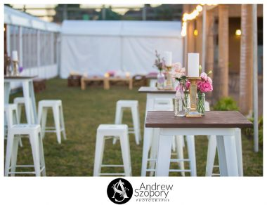 Southern-Highlands-Winery-wedding-reception-and-wedding-photographers_0349