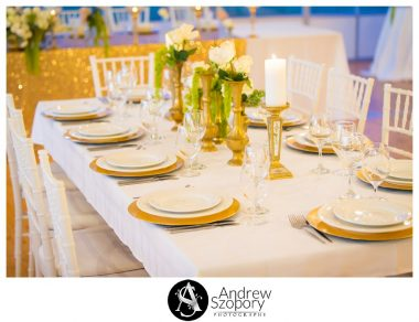 Southern-Highlands-Winery-wedding-reception-and-wedding-photographers_0351