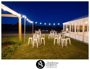 Southern-Highlands-Winery-wedding-reception-and-wedding-photographers_0358