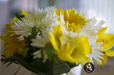 southern-highlands-wedding-photographer-3-of-44